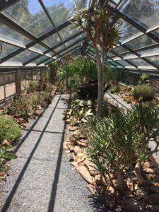 Plant Atelier in botanical garden Zuid-Afrika