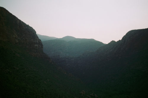 Nature on film