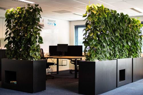 Anderhalve meter proef werkplekken met tof groen